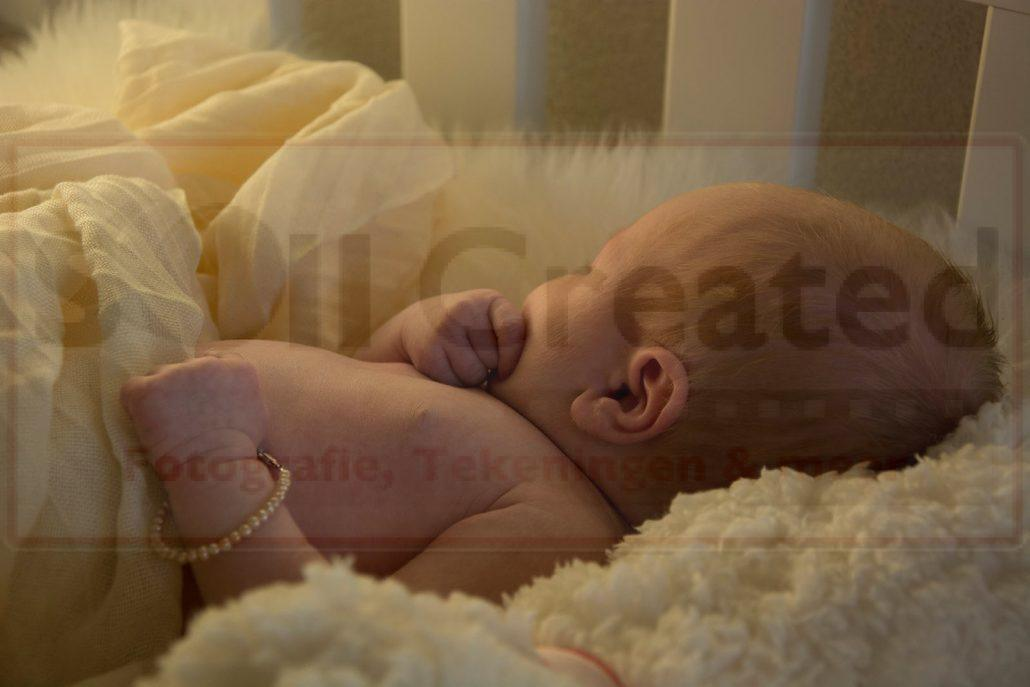 Newborn op locatie